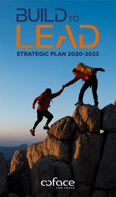Build to Lead: our new strategic plan for 2020-2023
